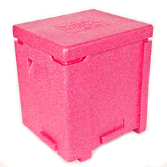 Magenta bee hive made from ARPRO (expanded polypropylene)